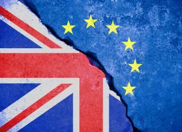 Dopravce RODOS nevylučuje po brexitu omezení doprav